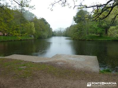 Ciudad Ducal y Torre de Eiffel;parque natural fuentes carrionas;parques naturales de murcia